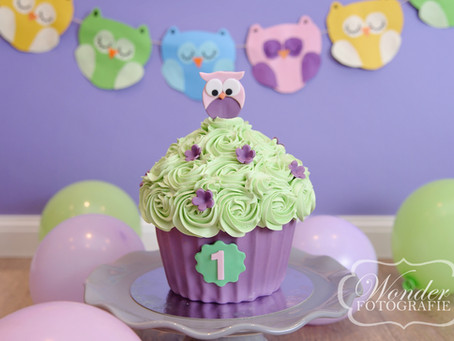 Cake Smash Paars met uiltjes