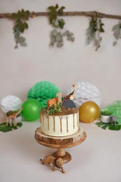 Gouden drip cake jungle
