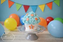Cake Smash Velgekleurd - Wonder Fotografie