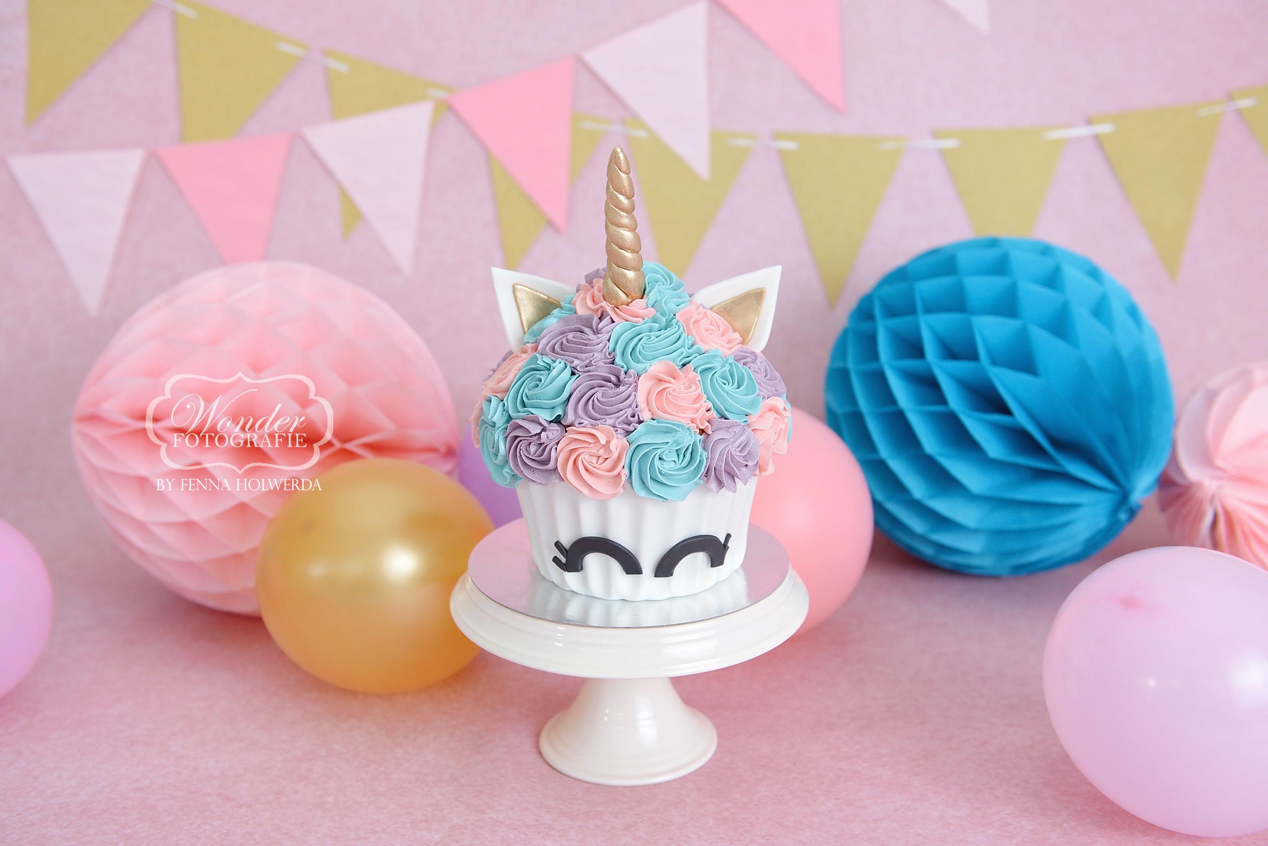 Cake Smash Fotoshoot roze doorlopende achtergrond unicorn eenhoorn