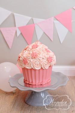 Cake Smash Fotoshoot Giant Cupcake taart oud-roze grijs
