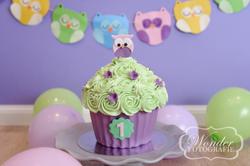 Cake Smash Fotoshoot Uilen