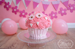 Cake Smash Roze bloemen - Wonder Fotografie