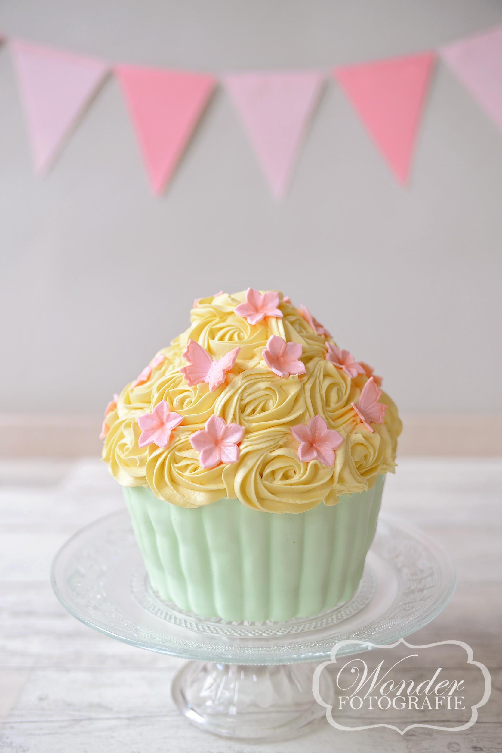 Cake Smash GroenGeelRoze - Wonder Fotografie