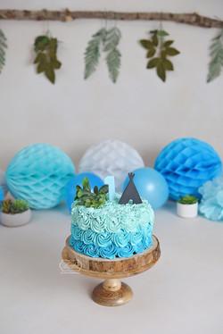 Blauw ombre rozetten taart cake smash fotoshoot