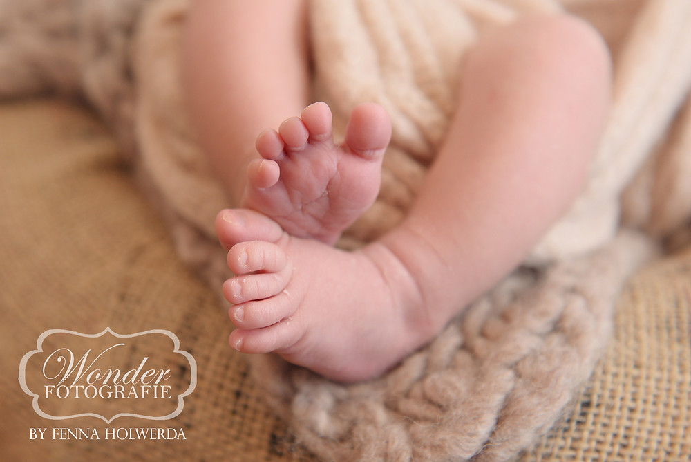 Fine Art Newborn Fotoshoot Puur Naturel Amersfoort