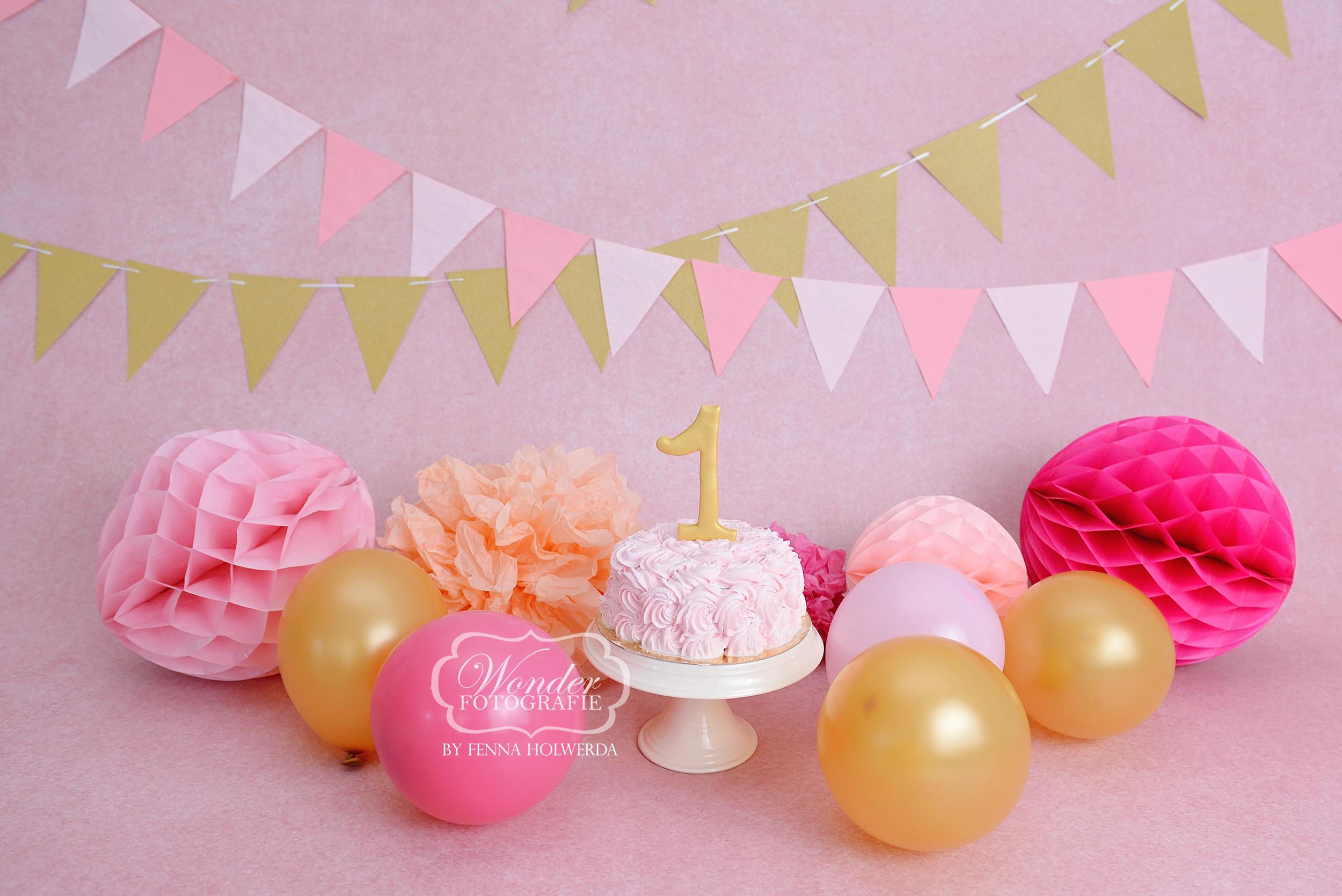 cake smash fotoshoot roze meisje doorlopende achtergrond wonder fotografie