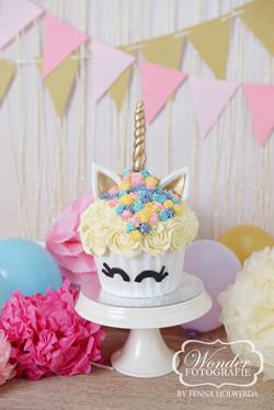Cake Smash Fotoshoot Unicorn taart eenhoorn giant cupcake