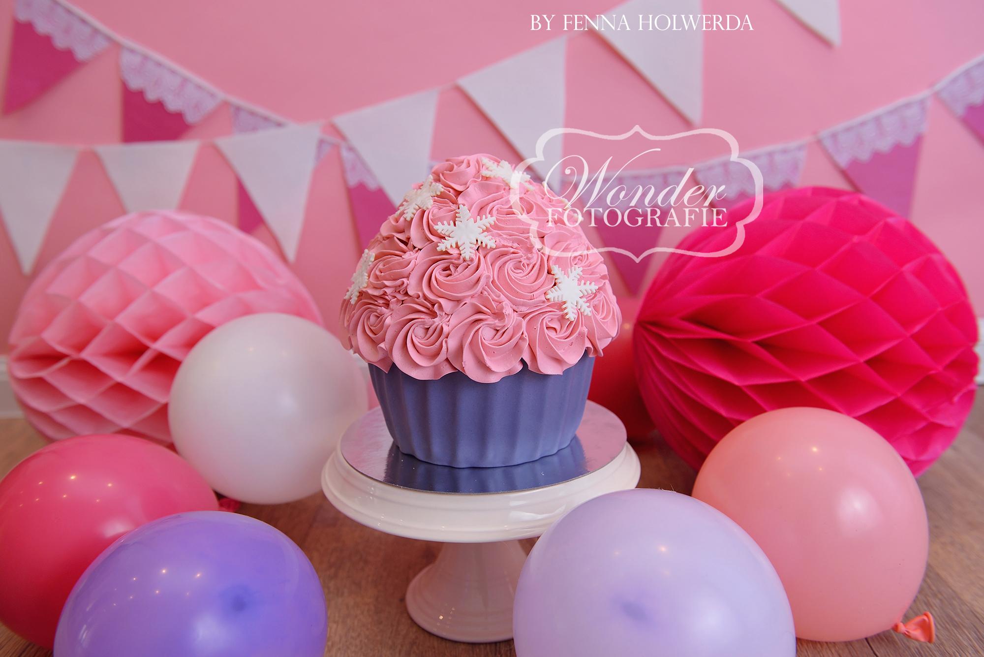 Cake smash fotoshoot taart giant cupcake thema inspiratie jongen meisje11