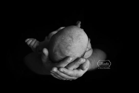1 newborn fotoshoot jongen boy almere ph