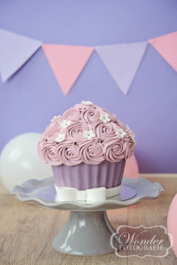 Cake Smash taart Lila Roze