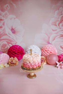 Roze Ombre Rosetten taart Bloemenachtergrond cake smash fotoshoot