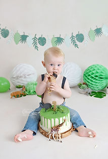 7 Cake Smash Fotoshoot jungle dieren .jp