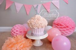 Cake smash fotoshoot taart giant cupcake thema inspiratie jongen meisje23