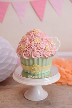 Cake smash fotoshoot taart giant cupcake thema inspiratie jongen meisje02