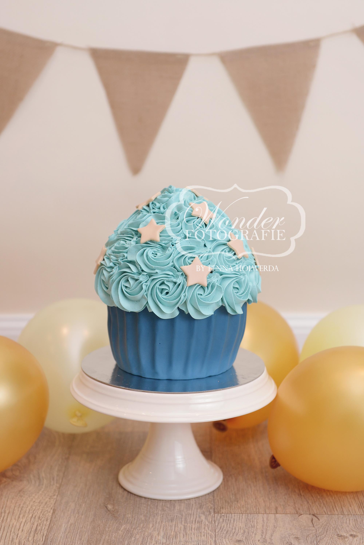 Cake smash fotoshoot taart giant cupcake thema inspiratie jongen meisje25