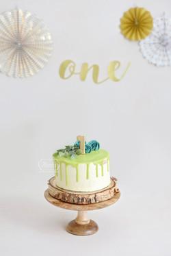 5 taart cake smash fotoshoot simpel natu