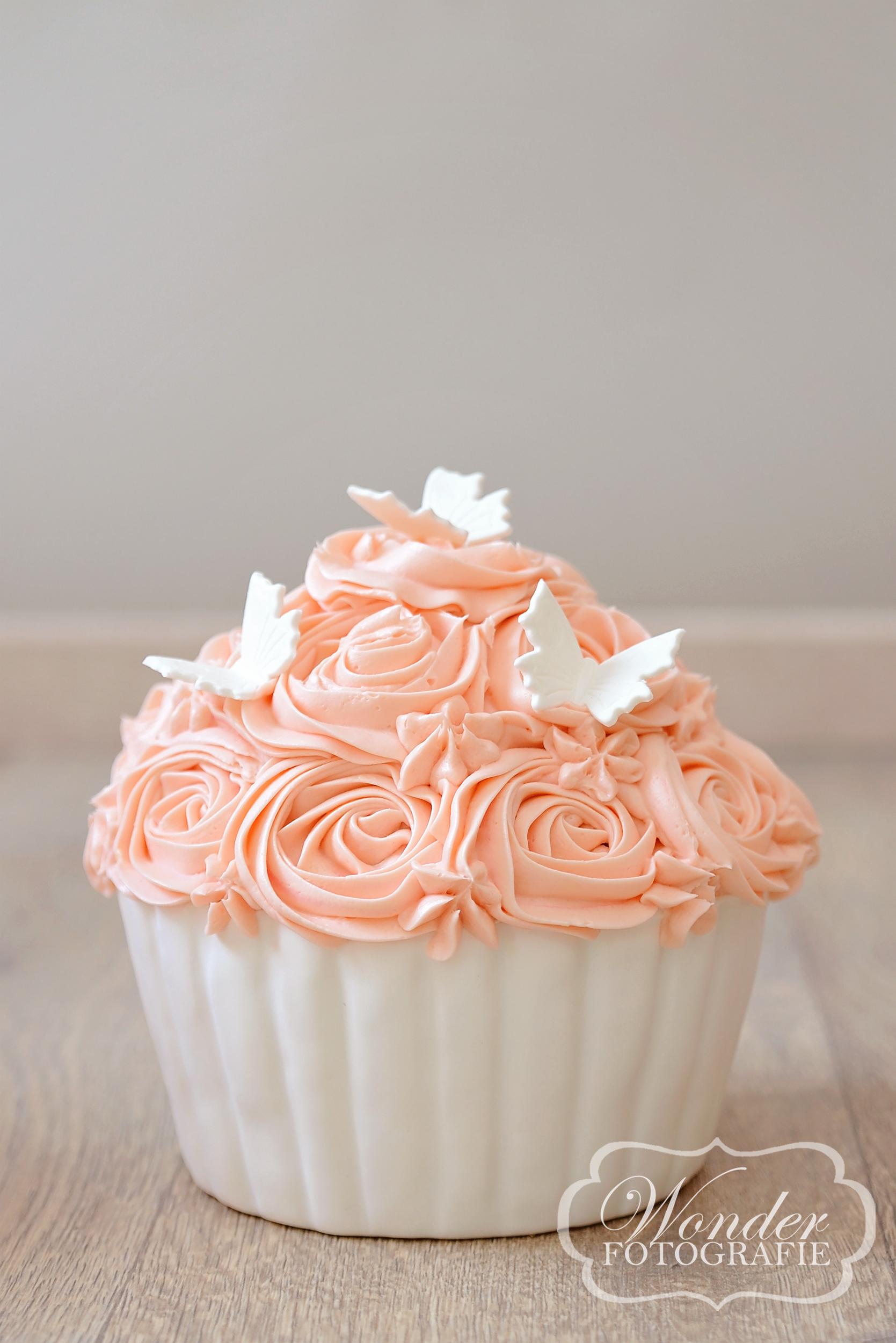 Cake Smash Zalm - Wonder Fotografie