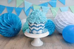 Cake smash fotoshoot taart giant cupcake thema inspiratie jongen meisje22