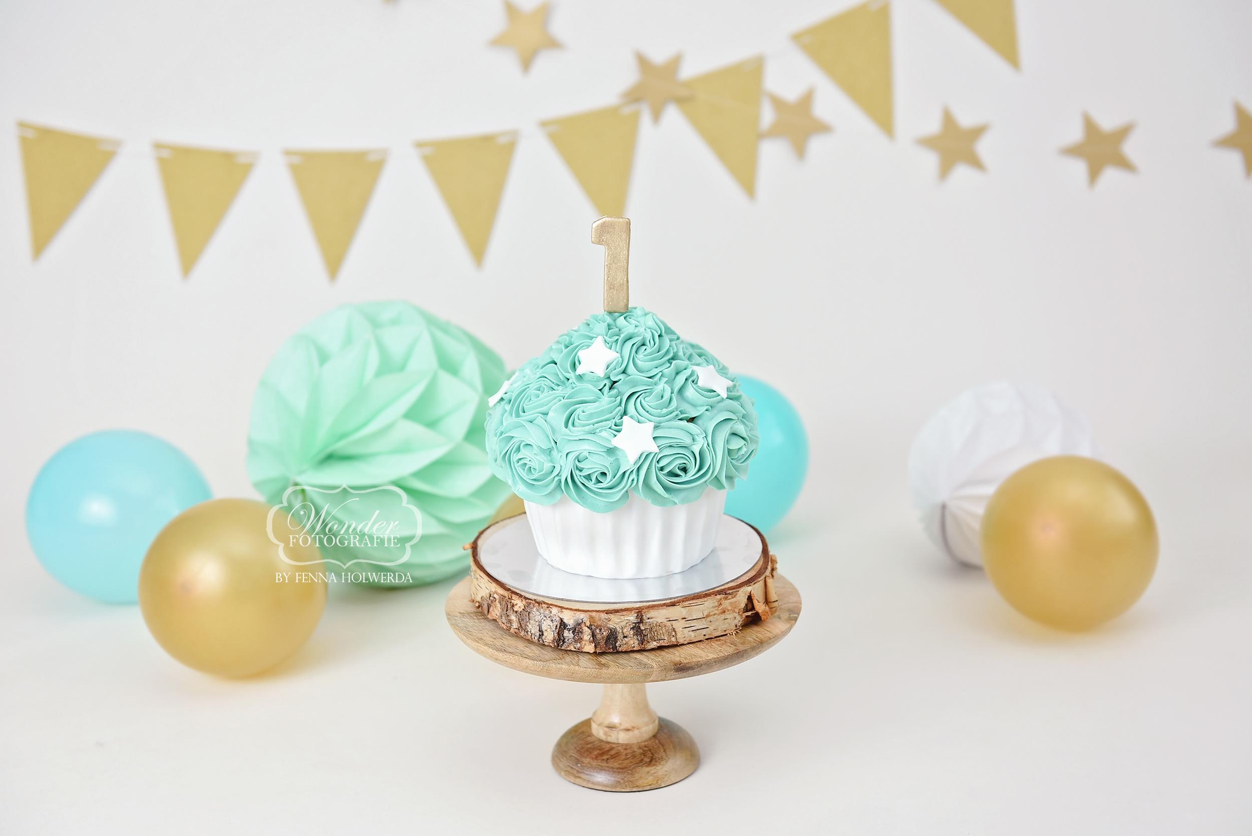 Cake Smash Fotoshoot giant cupcake taart