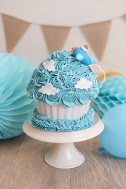 Cake smash fotoshoot taart giant cupcake thema inspiratie jongen meisje10