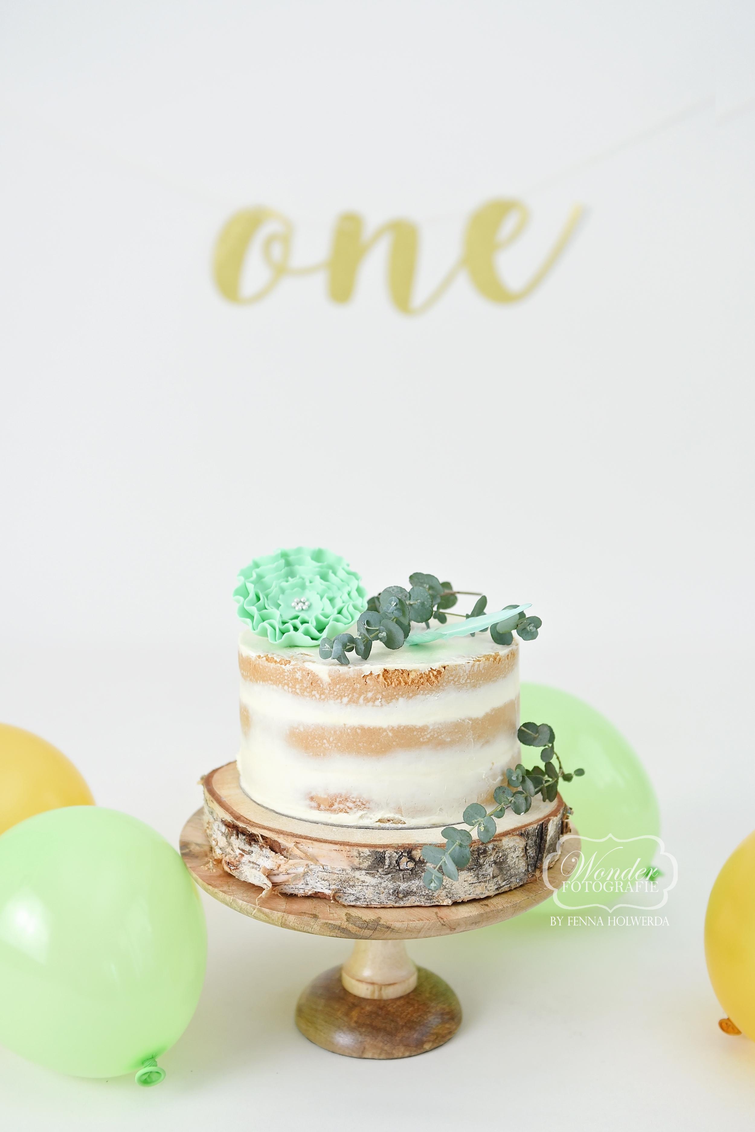 Boho cake smash taart cake smash fotoshoot mintgroen