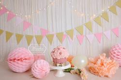 goud roze lampjes lichtjes lichtsnoer cake smash fotoshoot meisje