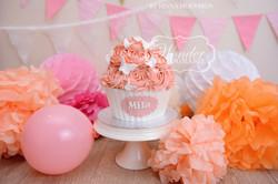 Cake smash fotoshoot taart giant cupcake thema inspiratie jongen meisje15