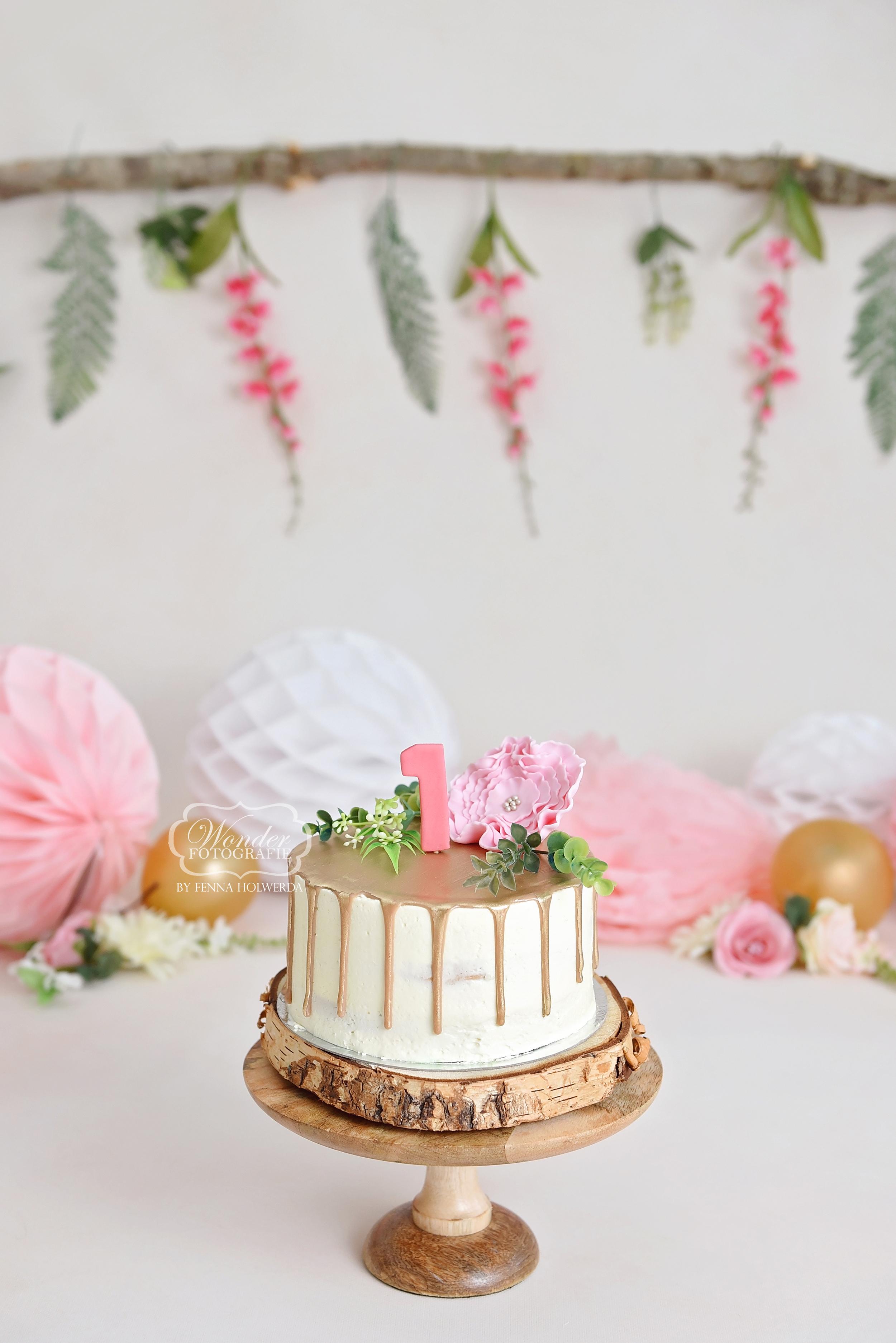 Spiksplinternieuw Cake Smash Fotoshoot MG-67
