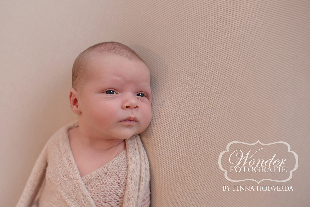 Fine Art Newborn Fotoshoot Puur Naturel Amersfoort