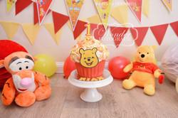 Cake smash fotoshoot taart giant cupcake thema inspiratie jongen meisje12