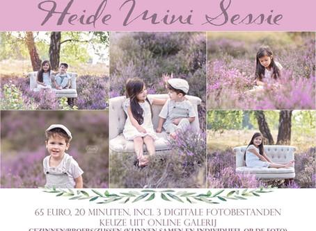 Heide Mini Sessies tussen de paarse bloemen