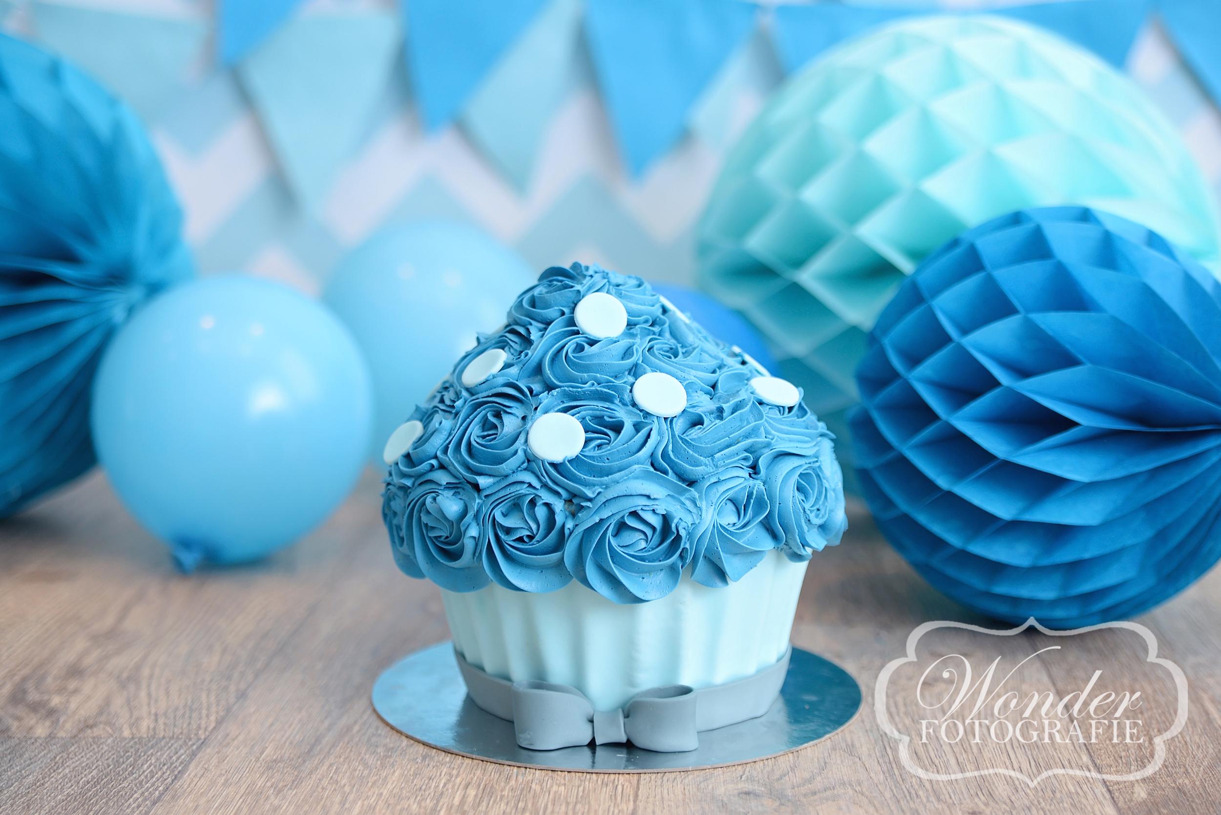 Cake Smash taart Blauw stippen