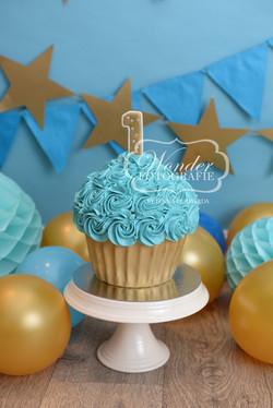 Cake smash fotoshoot taart giant cupcake thema inspiratie jongen meisje26