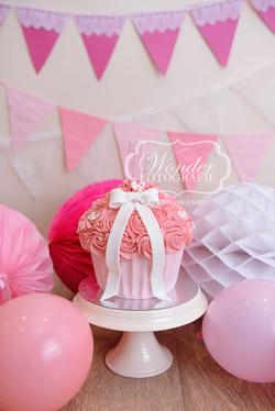 Cake smash fotoshoot taart giant cupcake thema inspiratie jongen meisje24