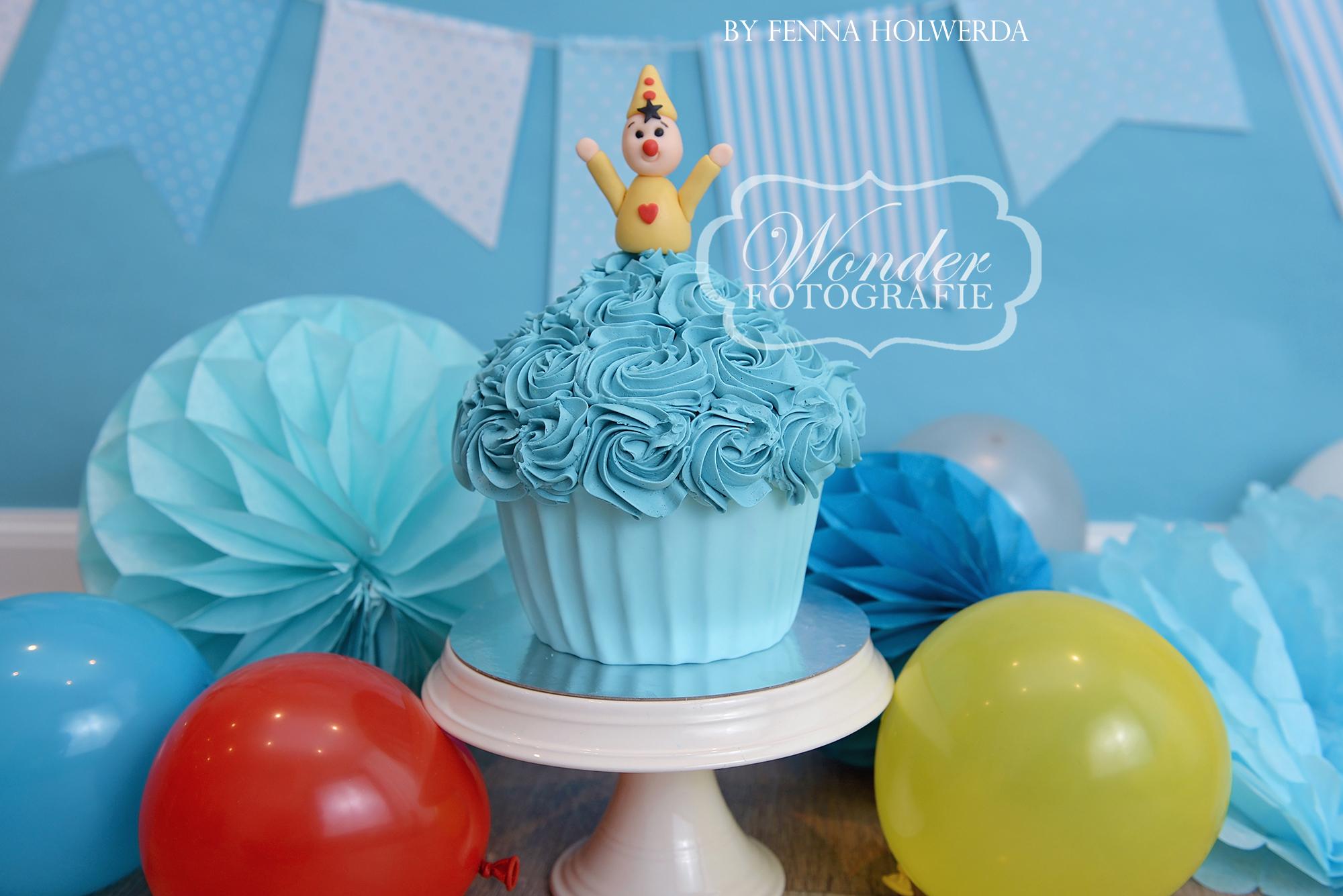 Cake smash fotoshoot taart giant cupcake thema inspiratie jongen meisje21