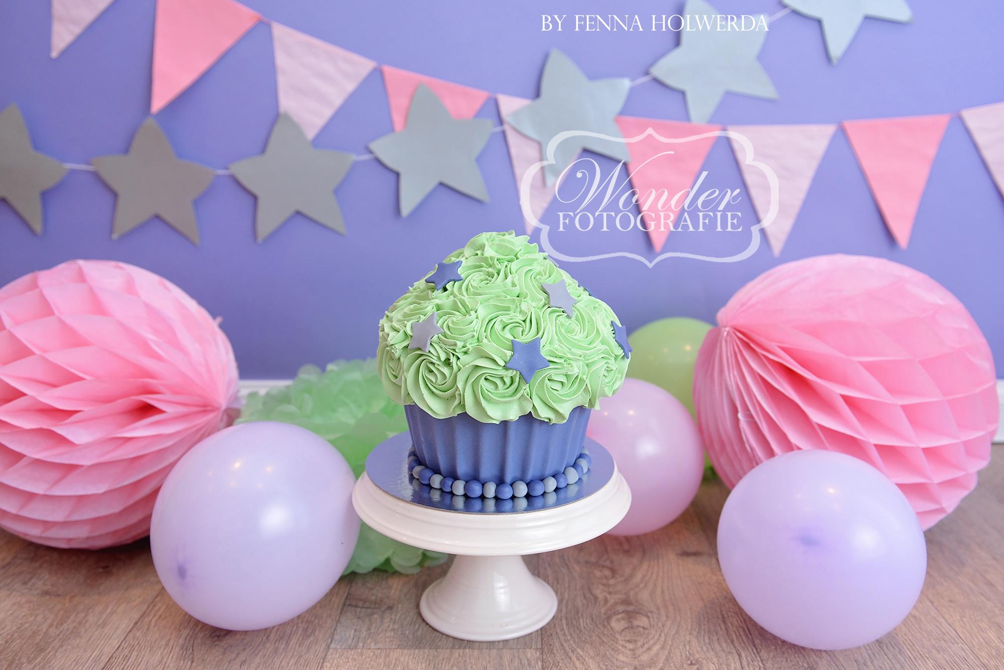 Cake smash fotoshoot taart giant cupcake thema inspiratie jongen meisje20
