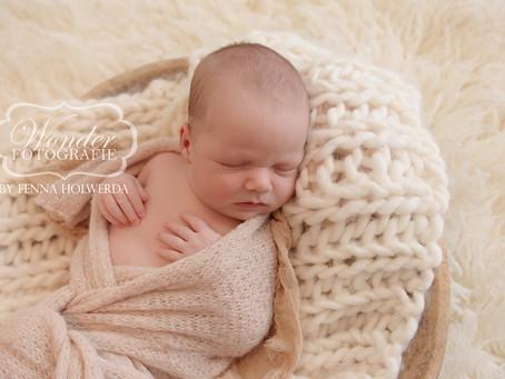 Fine Art Newborn Fotoshoot Frank