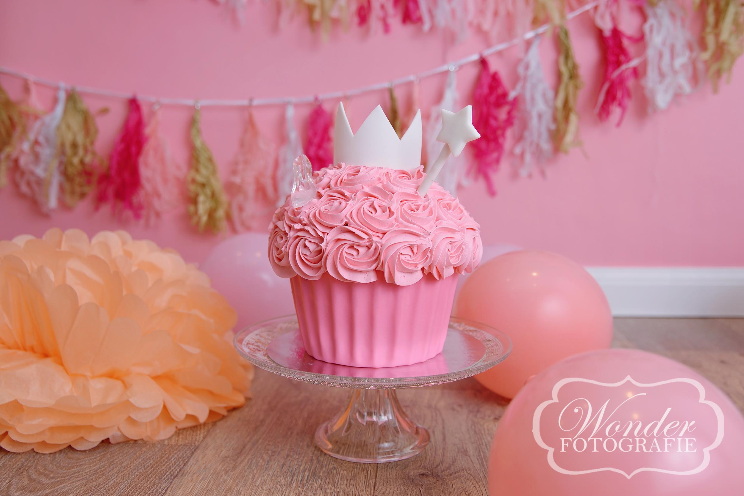 Cake Smash Roze Prinsessen - Wonder Fotografie