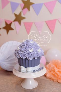 Cake smash fotoshoot taart giant cupcake thema inspiratie jongen meisje01