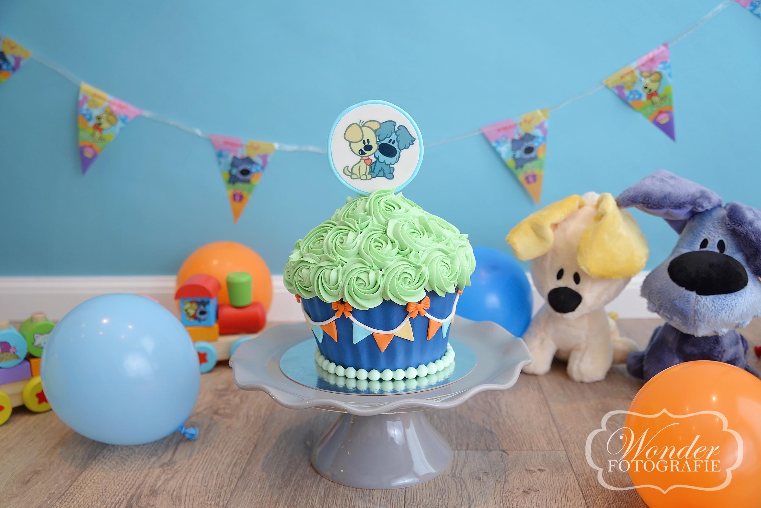 Cake Smash Woezel en Pip - Wonder Fotografie