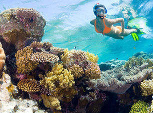 Roatan snorkeling.jpg