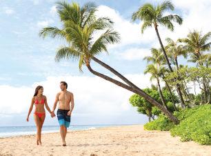 Hoteles baratos en Punta Cana | Republic Dominicana | contodoincluid.com