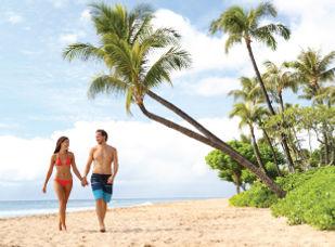 Vacaciones y Hoteles todo incluido baratos en Punta Cana | Republic Dominicana | contodoincluid.com