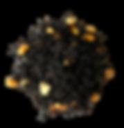 earl_grey_pa_quitar_fondo-12_800x.png