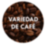 Variedad_de_Café.png