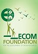 logo ecom foundation.png