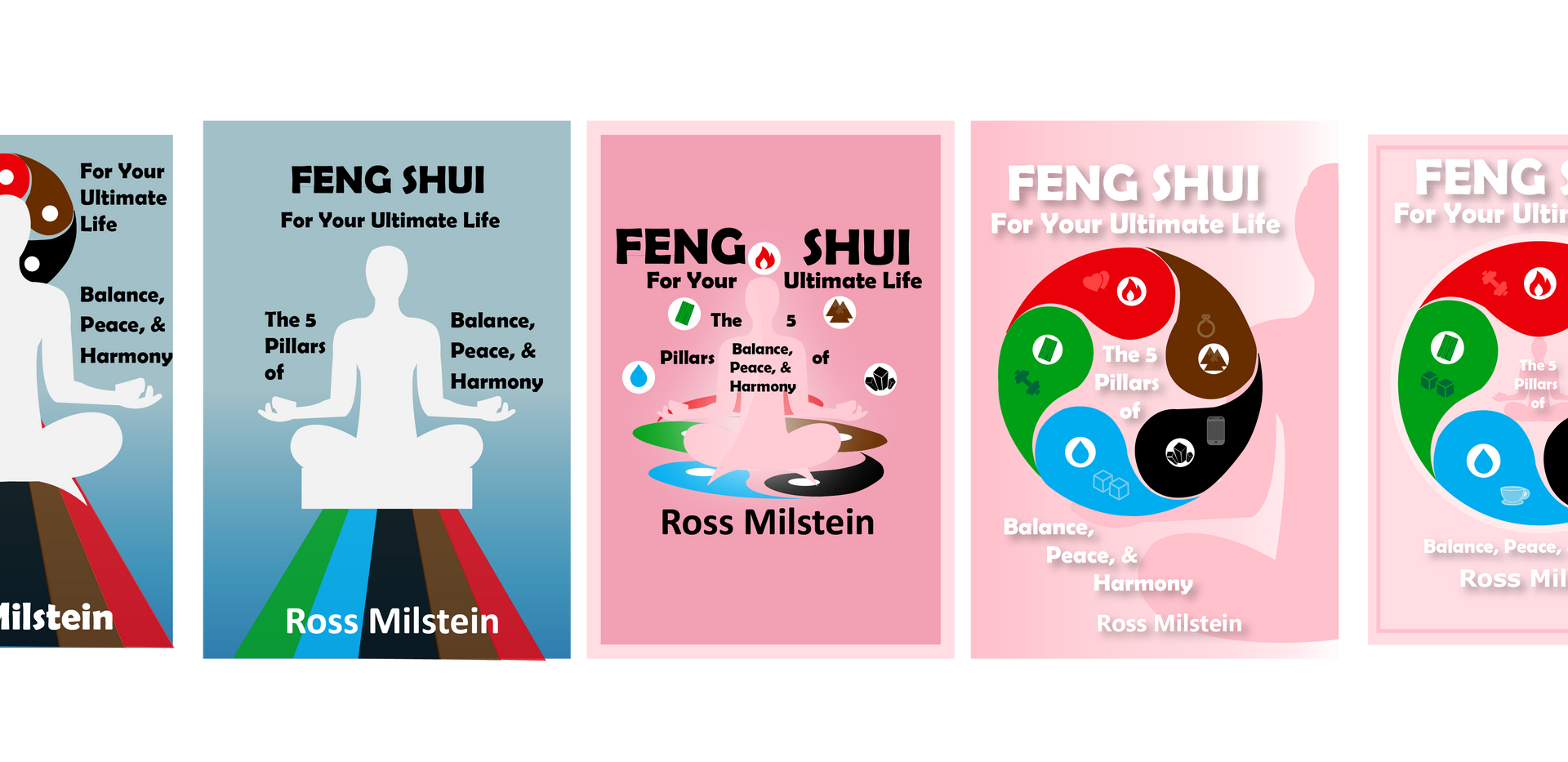 Coach Ross Angeles Feng Shui Book Cover Concepts