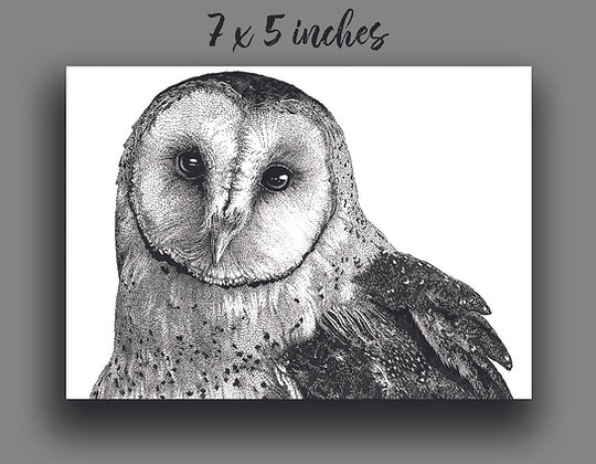 'Barn Owl' Signed Print