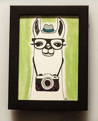 Camera Llama